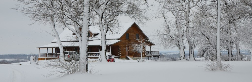 cropped-snow-2.jpg